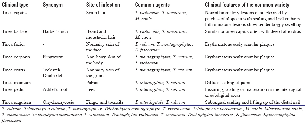 Table 2: Salient features of dermatophytosis